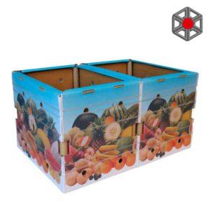 box-contenedor-color-1024x708-1