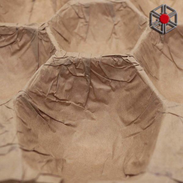 Alveolo-papel-03